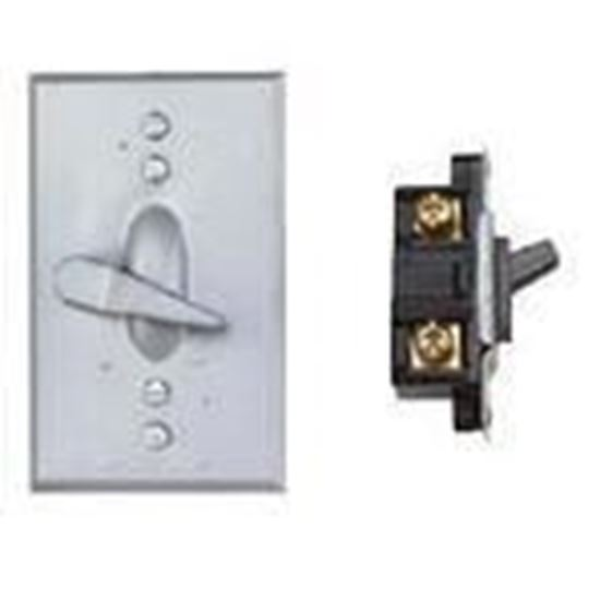 Picture of BWF TS-11V Lever Switch, 1-Gang, Weatherproof Cover