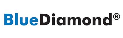 Picture for manufacturer Blue Diamond Pumps