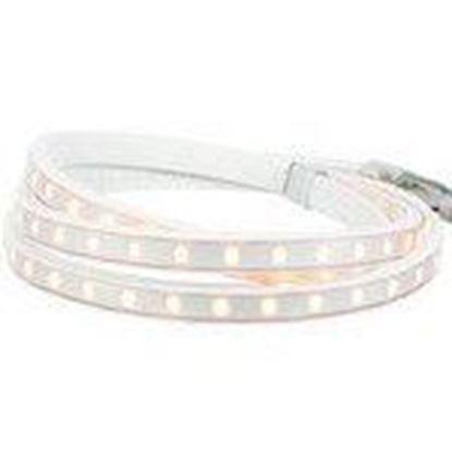 Picture of American Lighting 120-H2-WW LED Strip Light Reel, 120V, 150'
