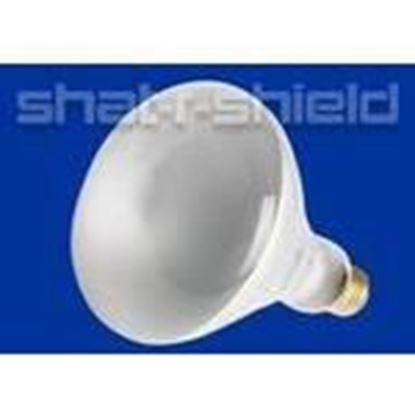 Picture of Shat-R-Shield 01222 65br30 Fl 130v (pk X 12)