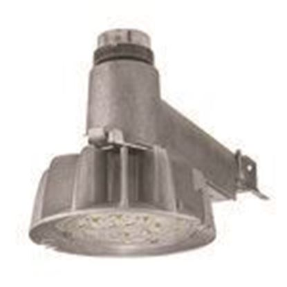 Picture of Lumark CTKRV2A Caretaker LED, Area Light, 70W, Gray