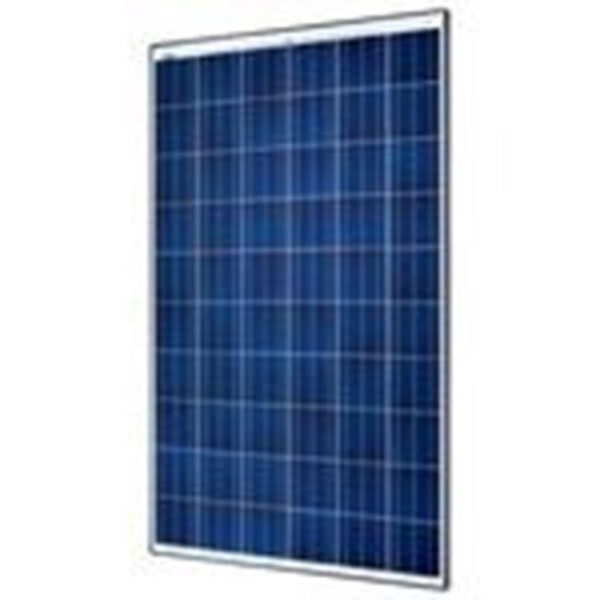 Picture of SolarWorld SW260PWOB33MM 260 Watt, Polycrystalline